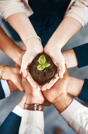 Entenda o que é desenvolvimento sustentável e porque é importante