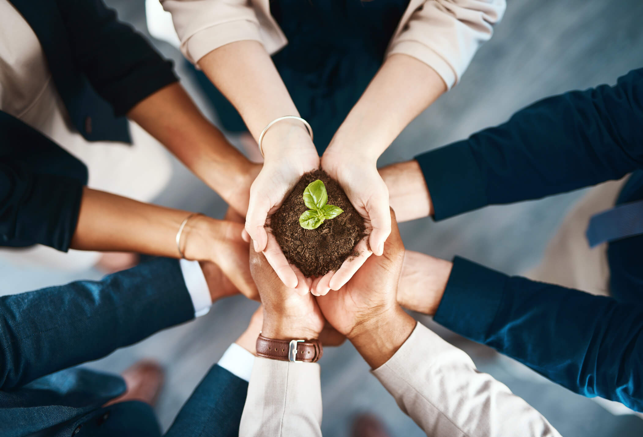 desenvolvimento-sustentável-meg-fnq